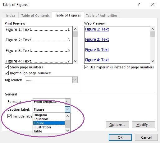 Dialogue box for inserting a table of figures