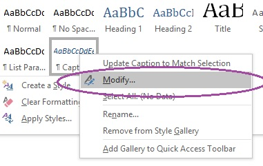 The box that appears when you right-click on 'Caption' in the styles pane.