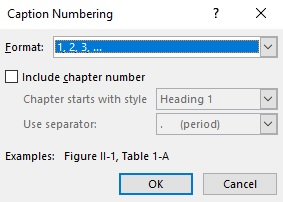Further dialogue box with numbering options