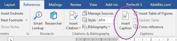 Shows the location of the Insert Caption tool on the References tab